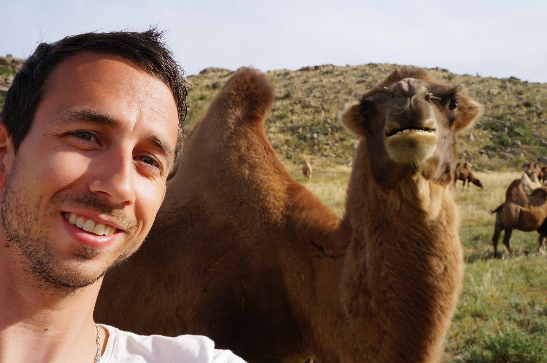 selfie chameau