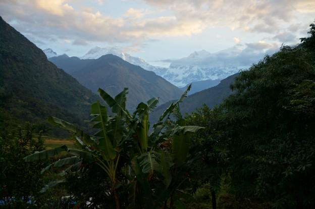 8 palmier montagnes