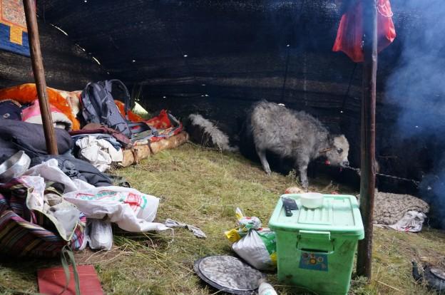 intérieur tente nomade