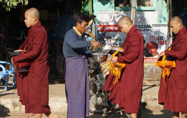 moines nourriture