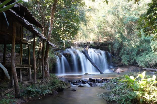 chute eau jungle