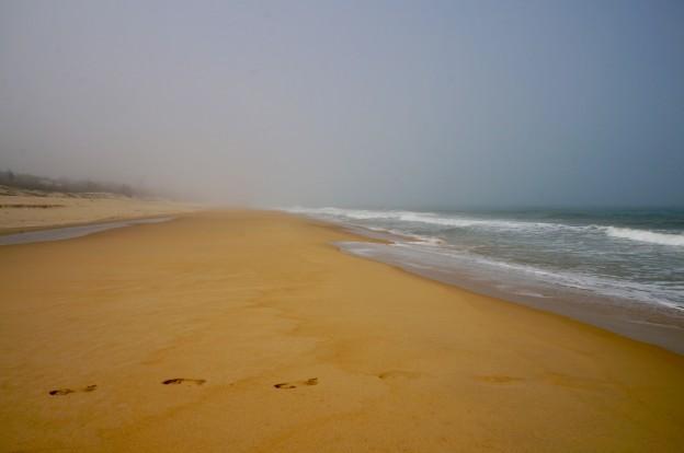 sable brouillard