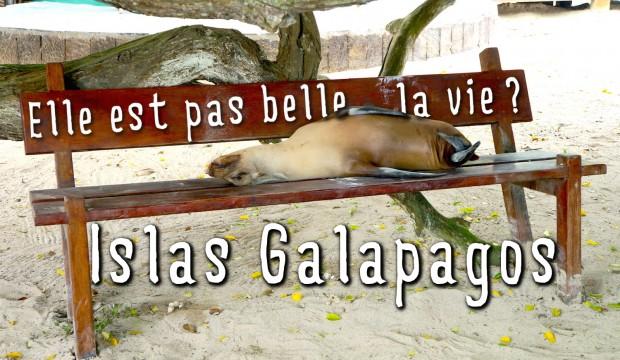 Au paradis? Oui mais aux Galapagos!