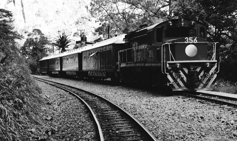train noir blanc 1