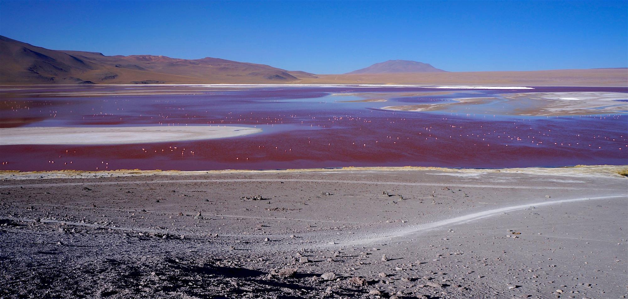 laguna colorada 2